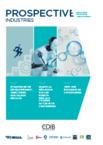 Prospective industrie CDIB n°3